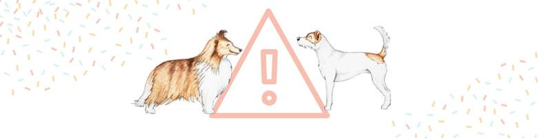 Illustrationen für Hundeblogger: Hunderassen