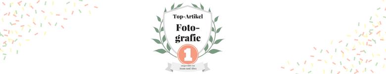 Die besten Hundeblogs - 10 Top Artikel
