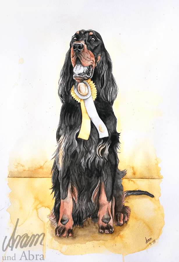 Portrait_Zeichnung_Tusche_Aquarell_Hund_Setter