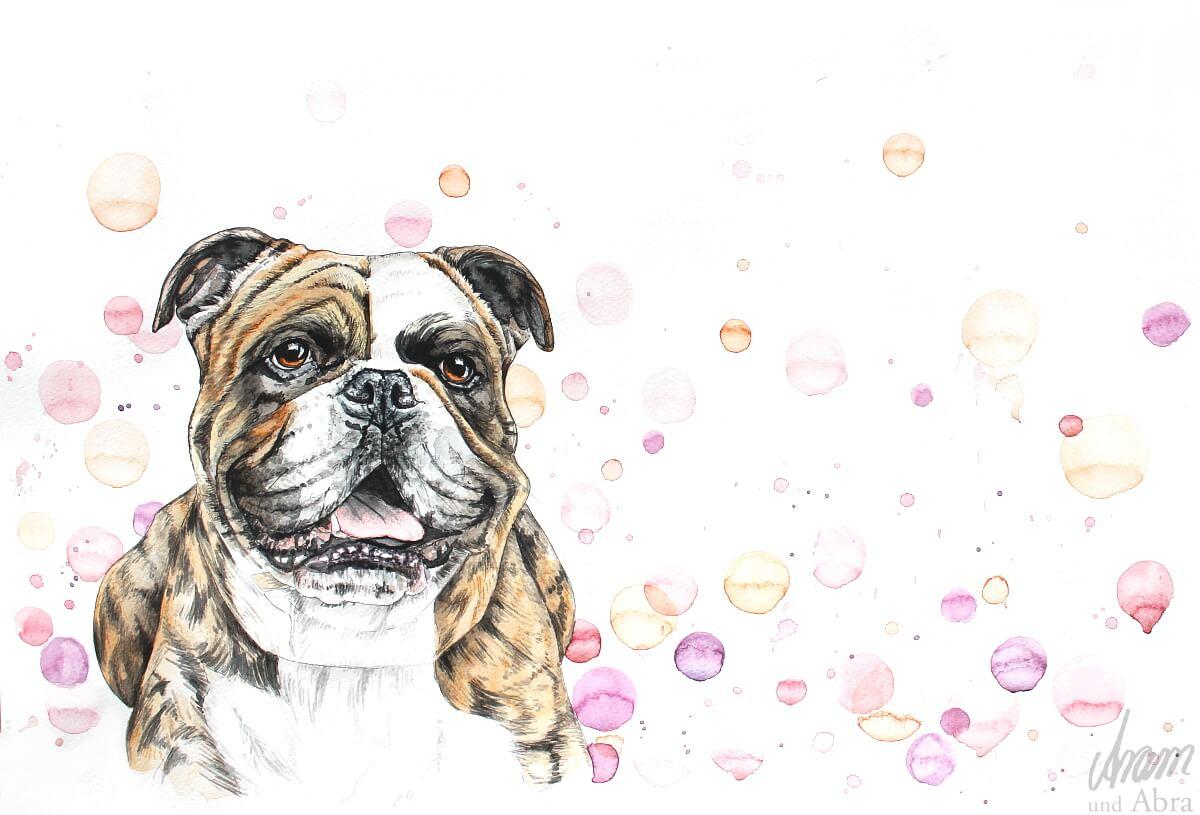 Zeichnung Hund_Continental Bulldog_Aquarell_Aram und Abra