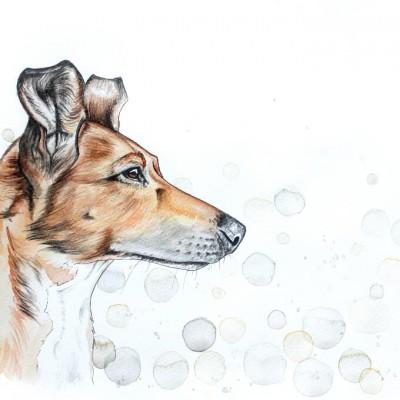 Aram und Abra_Hund zeichnen lassen_Kalender 2018_Aquarell