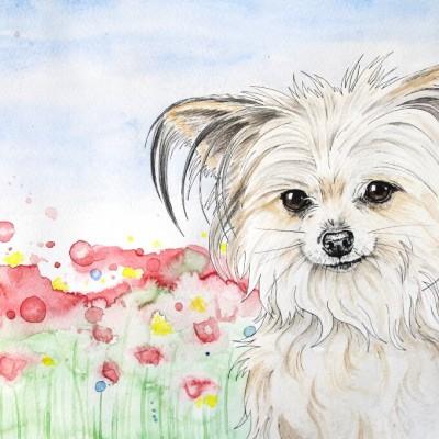Aram und Abra_Hund zeichnen lassen_Kalender 2018_Blumen_Aquarell