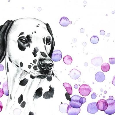 Aram und Abra_Hund zeichnen lassen_Kalender 2018_Dalmatiner_Farbkleckse_Aquarell