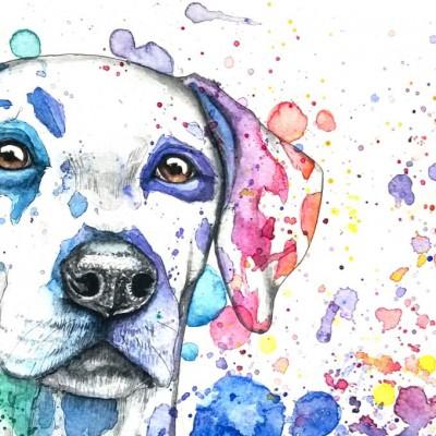 Aram und Abra_Hund zeichnen lassen_Kalender 2018_Dalmatiner_Farbkleckse_Aquarell_Regenbogen