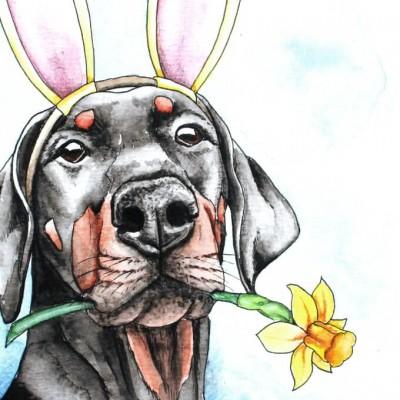 Aram und Abra_Hund zeichnen lassen_Kalender 2018_Dobermann_Ostern_Aquarell