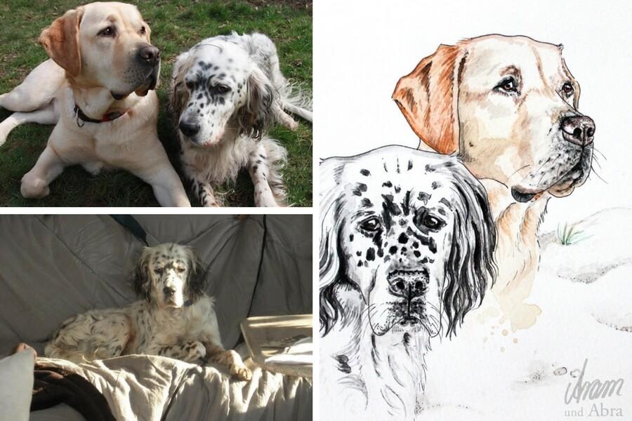 Tierportraits FAQ_Zeichnung Aquarell Labrador_Setter