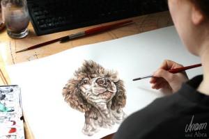 Tierportraits FAQ_Zeichnung Aquarell_Hund_Pudel