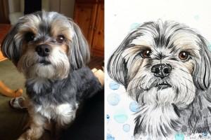 Tierportraits FAQ_Zeichnung Aquarell_Yorkshire Terrier_Mischling