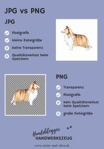 JPG vs PNG: Dateiformate für Hundeblogger, by Aram und Abra